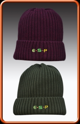 Esp Head Case